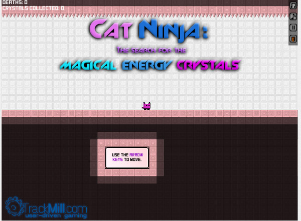 Image Cat ninja